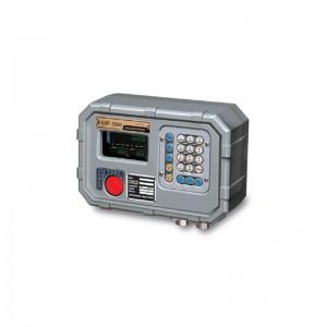 Взрывобезопасный индикатор CAS EXP-5500A